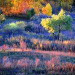 Peggy-Dietz--Setting-Sun-at-Riverside--150x150
